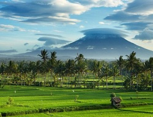 A Day In The Life Of A Digital Nomad In Bali
